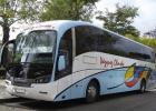Foto Bus con Arboles.Volm Twitter