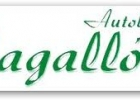 LOGO MAGALLON