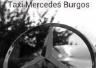 foto reducida del logo taxi