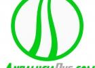 Vectorizado Logo01