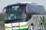 Standard Coach, MAN, Autocar estándar con los servicios básicos , 2008, 39 seats